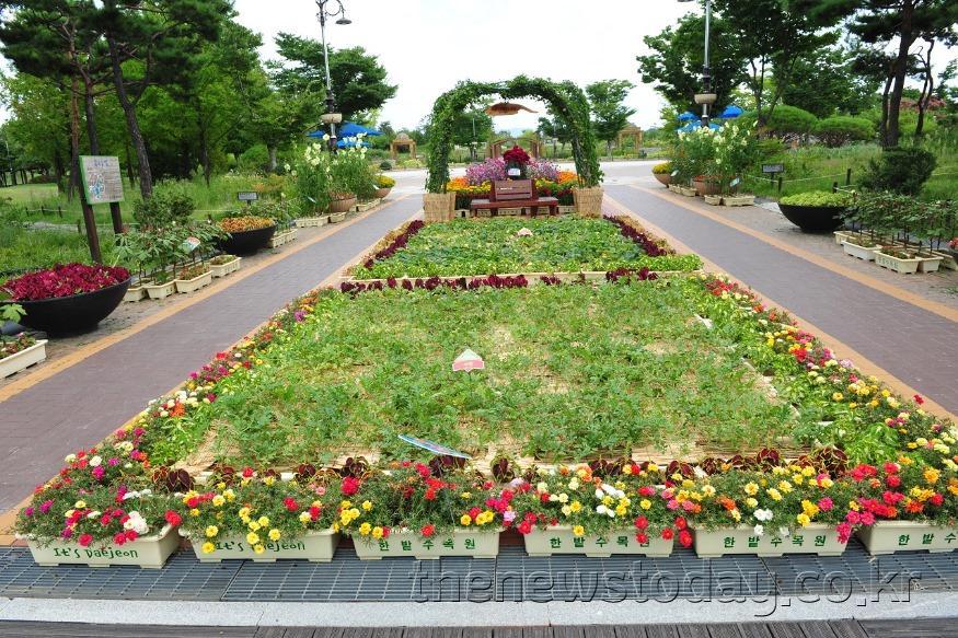 한밭수목원, 우리꽃 전통생활식물 전시 (2).JPG
